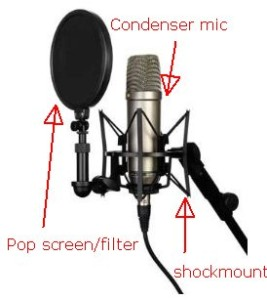 Condenser microphones with pop filter and shock mount