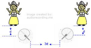 Directional microphones to reduce microphone interference