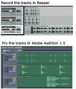 Record the tracks in Reaper and Mix in Adobe Audition