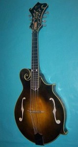 Mandolin string instrument