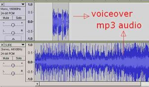 Watermark and MP3 waveform together