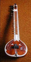 What a Sitar looks like